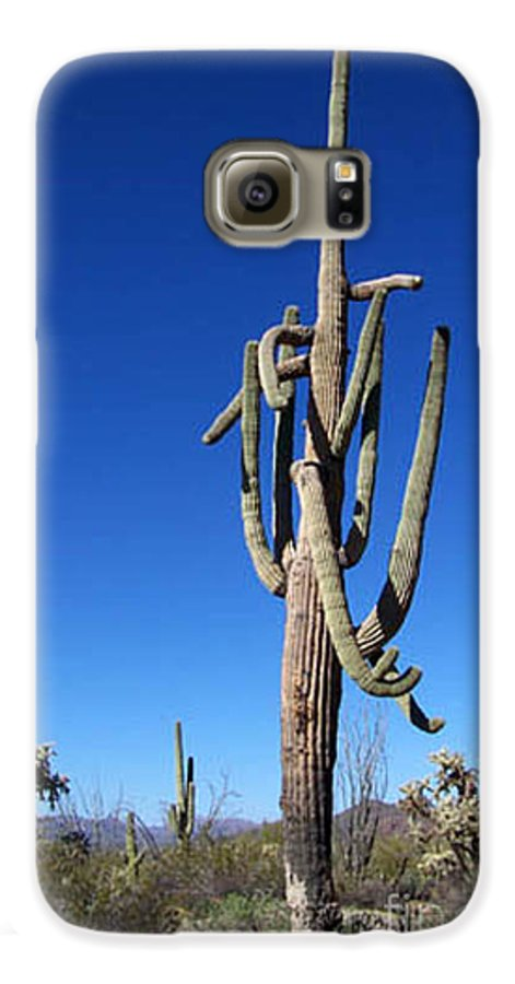 Sahuaro Galaxy S6 Case featuring the photograph Twisted Sentinal by Kathy McClure