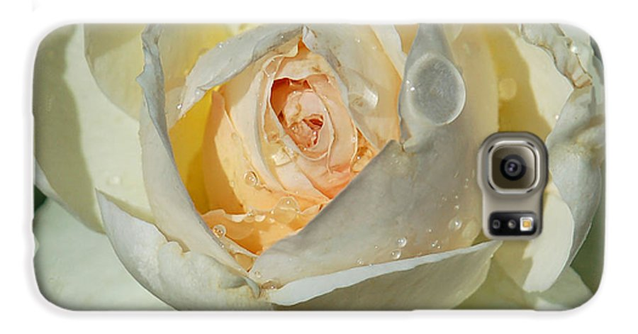 Rose Galaxy S6 Case featuring the photograph Unfolding by Suzanne Gaff
