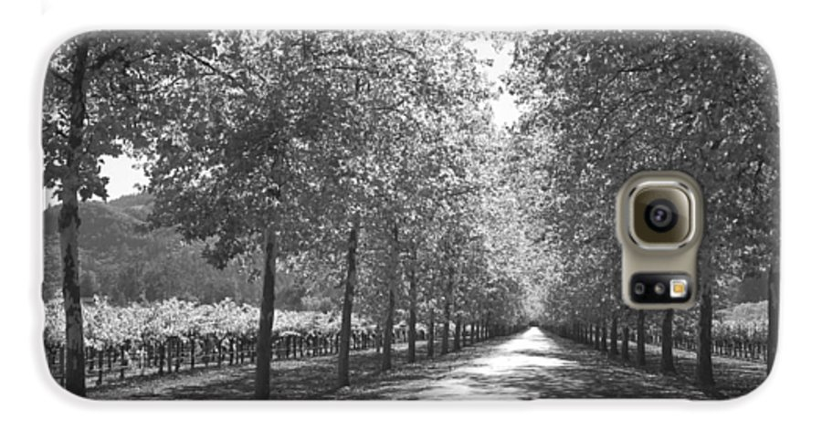 Black And White Galaxy S6 Case featuring the photograph Wine Country Napa Black And White by Suzanne Gaff