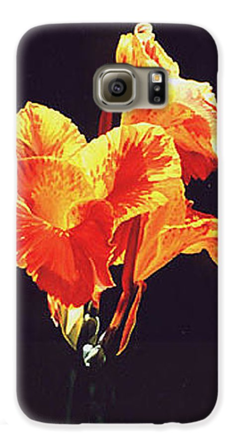 Floral Galaxy S6 Case featuring the painting Yellow Canna by Gary Hernandez