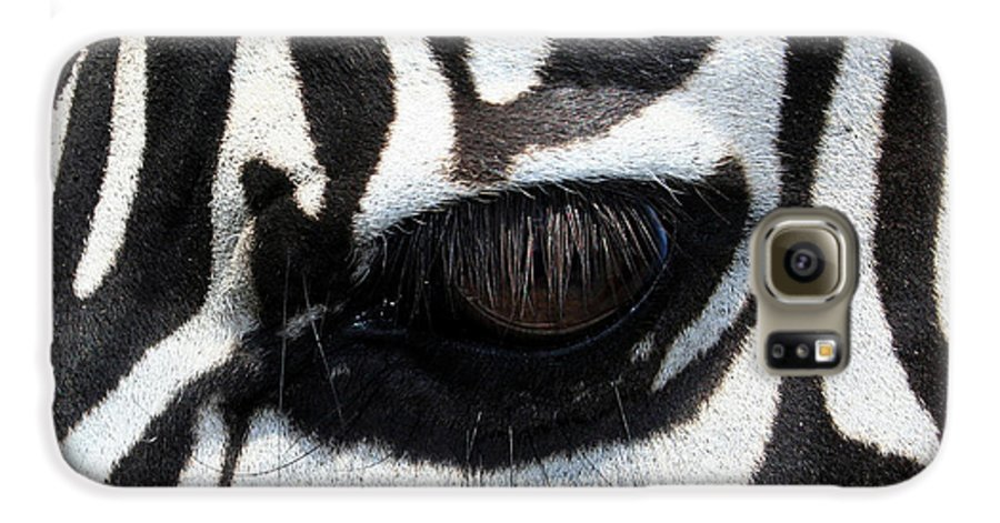 Zebra Galaxy S6 Case featuring the photograph Zebra Eye by Linda Sannuti