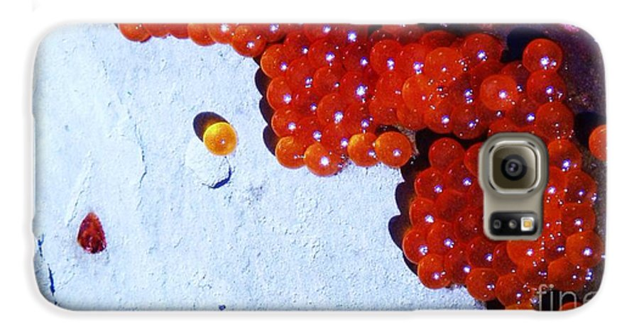 Photograph Fish Egg Lake Water Rock Galaxy S6 Case featuring the photograph Don't Kill Me. by Seon-Jeong Kim