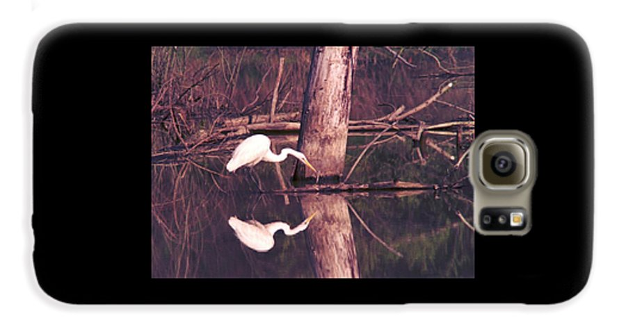 Great Egret Galaxy S6 Case featuring the photograph 070406-17 by Mike Davis