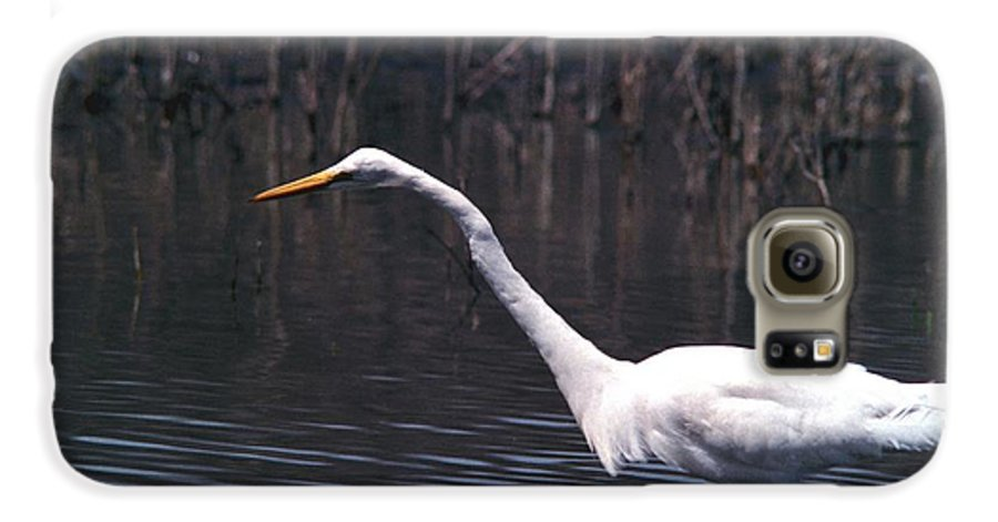 Great Egret Galaxy S6 Case featuring the photograph 070406-8 by Mike Davis