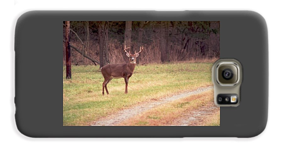 Deer Galaxy S6 Case featuring the photograph 070506-17 by Mike Davis