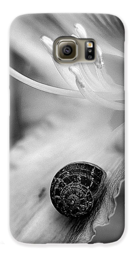 Clay Galaxy S6 Case featuring the photograph B And White Floral With Snail by Clayton Bruster