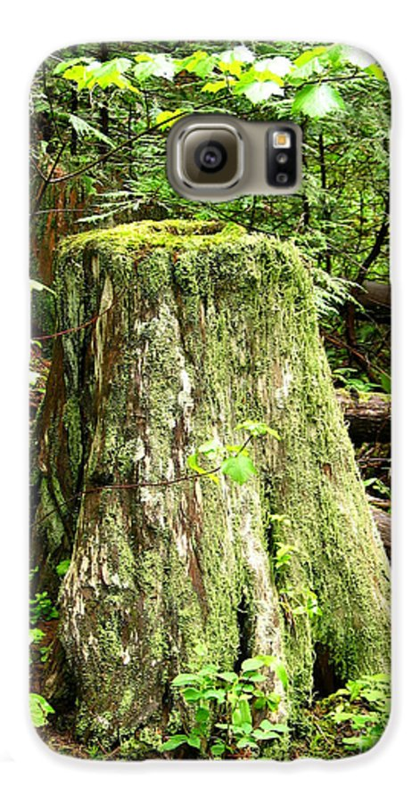 Moss Galaxy S6 Case featuring the photograph Transition by Idaho Scenic Images Linda Lantzy