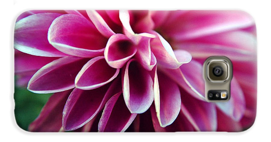 Flower Galaxy S6 Case featuring the photograph Untitled by Kathy Schumann