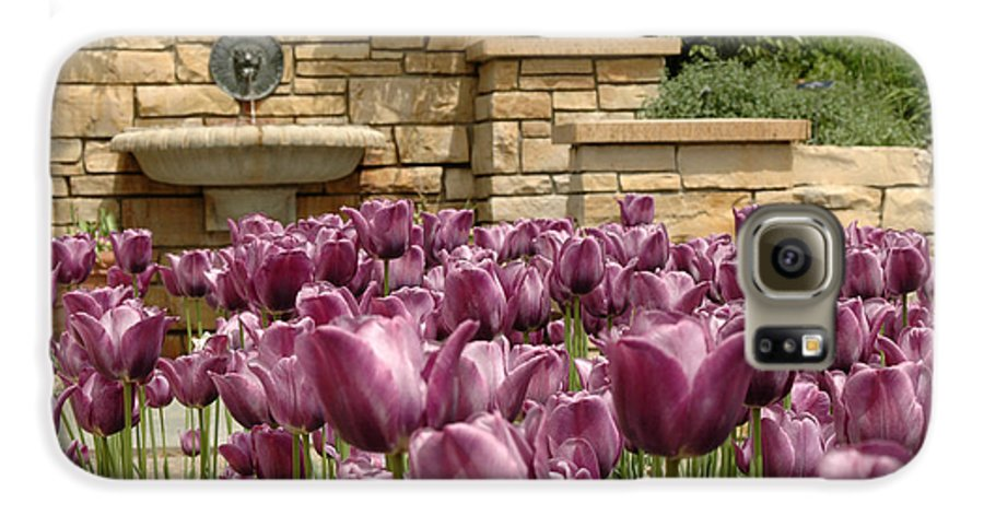 Flora Galaxy S6 Case featuring the photograph Untitled by Kathy Schumann