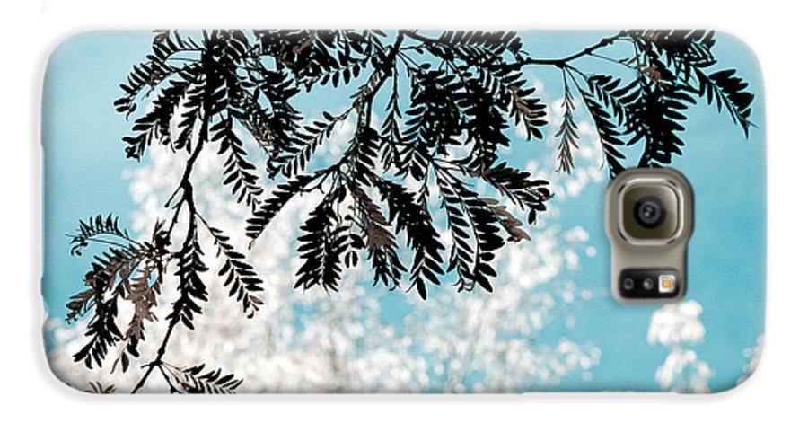 Tree Galaxy S6 Case featuring the photograph Abstract Locust by Marilyn Hunt