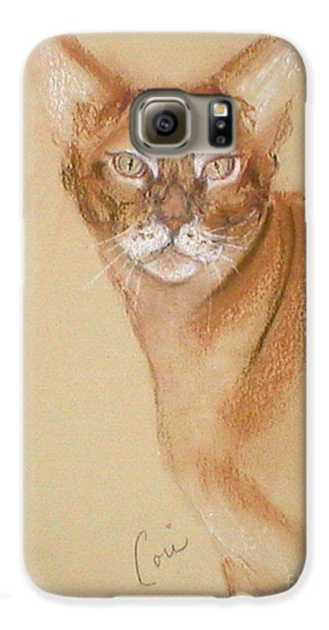 Pastel Galaxy S6 Case featuring the drawing Abyssinian by Cori Solomon