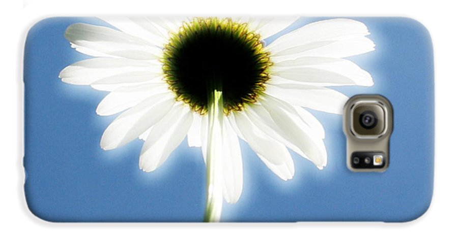 Daisy Galaxy S6 Case featuring the photograph Achievement by Idaho Scenic Images Linda Lantzy