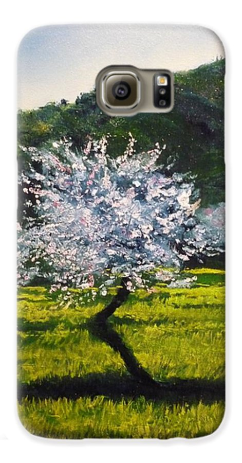 Almond Tree Galaxy S6 Case featuring the painting Almond Tree In Blossom by Lizzy Forrester
