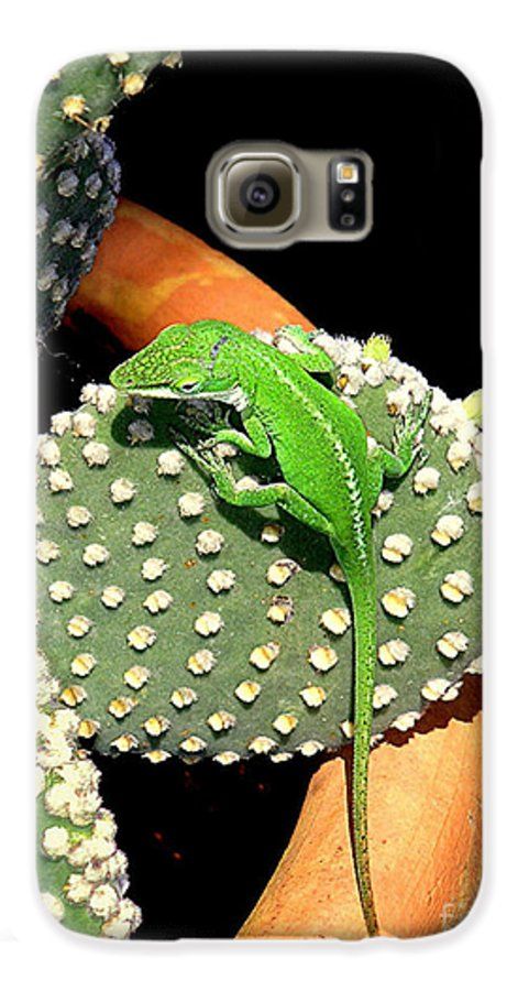 Nature Galaxy S6 Case featuring the photograph Anole Hanging Out With Cactus by Lucyna A M Green