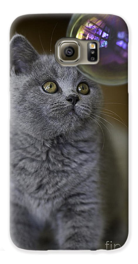 Cat Galaxy S6 Case featuring the photograph Archie With Bubble by Avalon Fine Art Photography