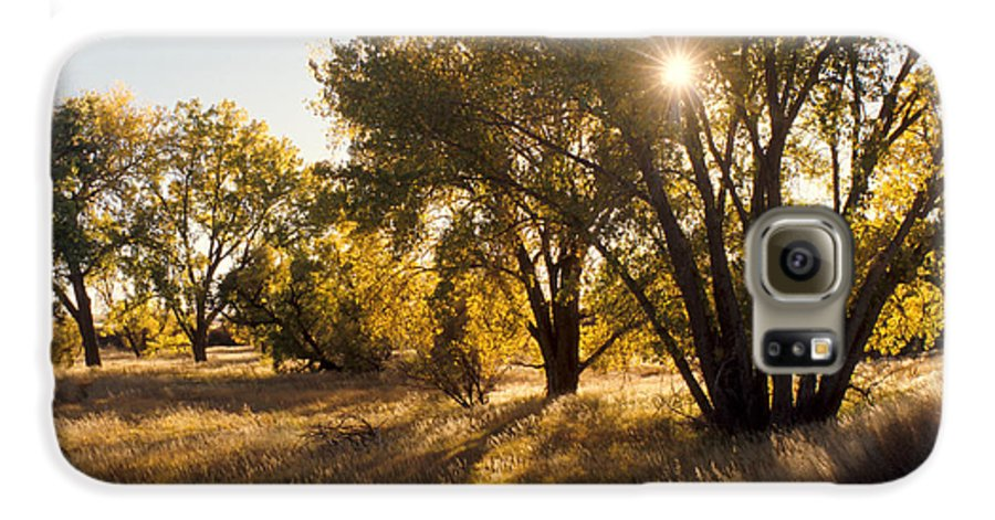 Fall Galaxy S6 Case featuring the photograph Autum Sunburst by Jerry McElroy