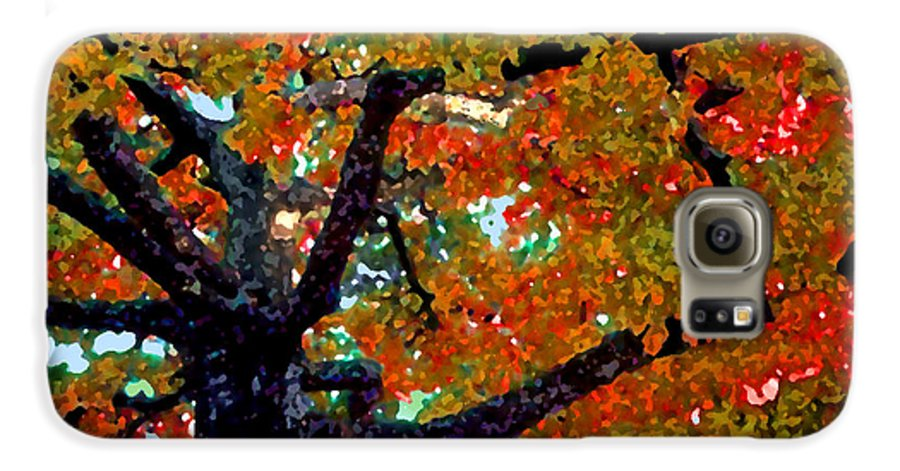 Fall Galaxy S6 Case featuring the photograph Autumn Tree by Steve Karol