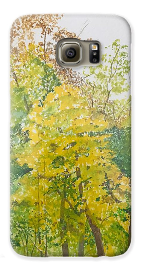 Autumn Galaxy S6 Case featuring the painting Backyard by Leah Tomaino