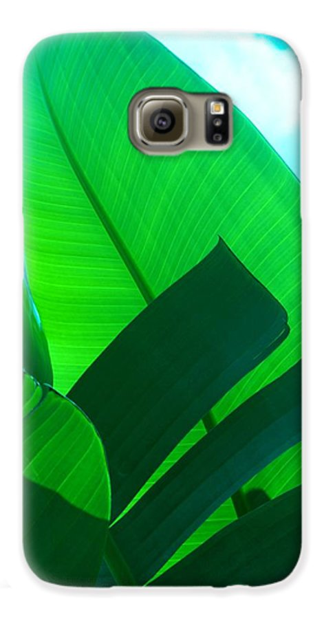 Botanical Galaxy S6 Case featuring the photograph Banana Aqua by Florene Welebny