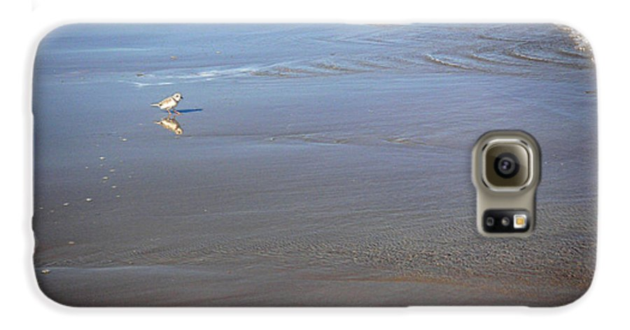Nature Galaxy S6 Case featuring the photograph Being One With The Gulf - Cautious by Lucyna A M Green