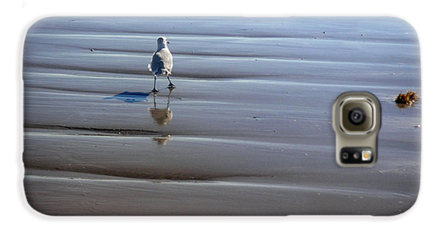 Nature Galaxy S6 Case featuring the photograph Being One With The Gulf - Escaping by Lucyna A M Green