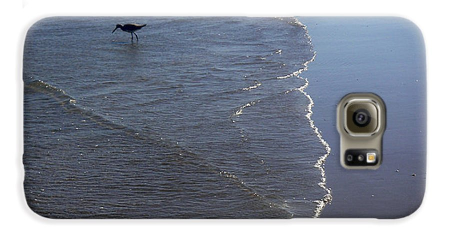 Nature Galaxy S6 Case featuring the photograph Being One With The Gulf - Pinpointing by Lucyna A M Green