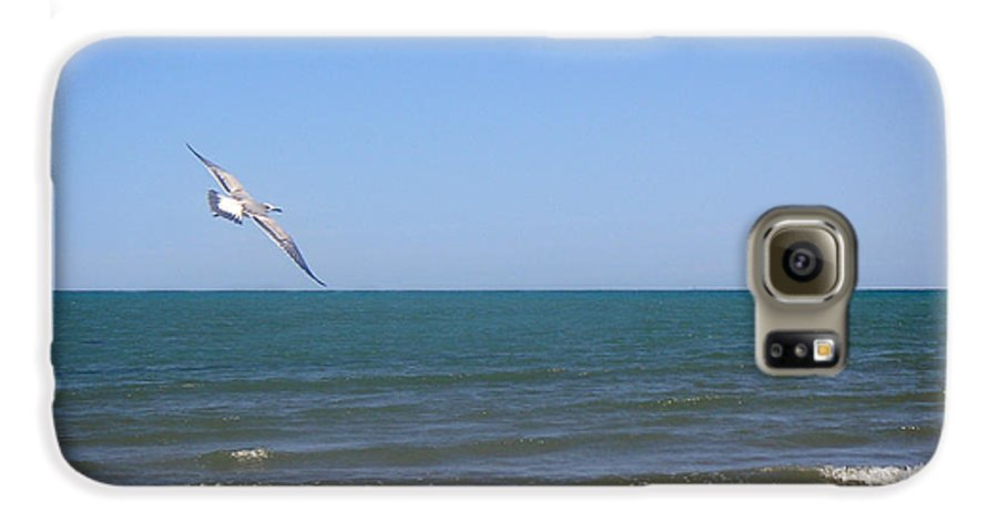 Nature Galaxy S6 Case featuring the photograph Being One With The Gulf - Soaring by Lucyna A M Green