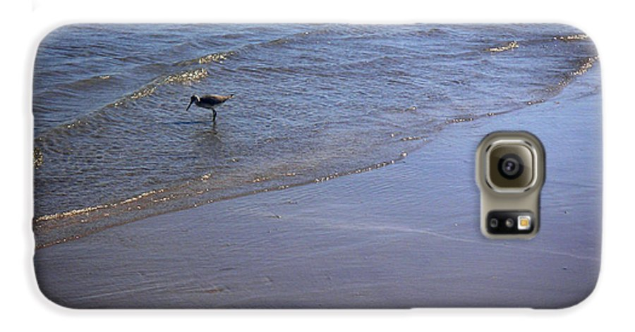 Nature Galaxy S6 Case featuring the photograph Being One With The Gulf - Spotting by Lucyna A M Green