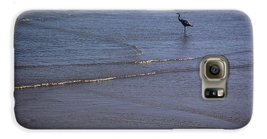 Nature Galaxy S6 Case featuring the photograph Being One With The Gulf - Watching by Lucyna A M Green