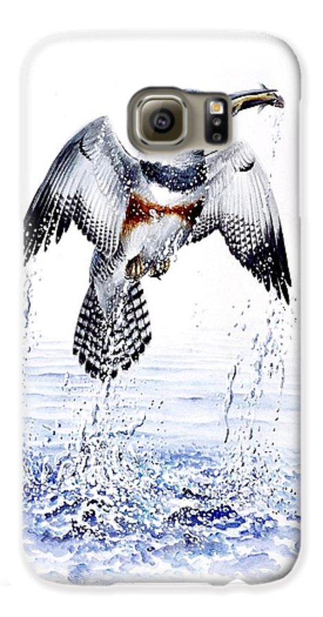 Chris Cox Galaxy S6 Case featuring the painting Belted Kingfisher by Christopher Cox