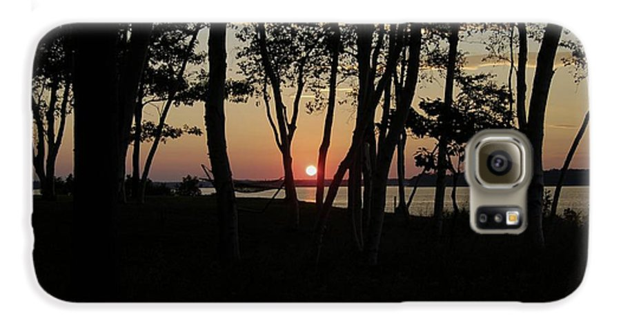 Birch Galaxy S6 Case featuring the photograph Birches Watch The Sunset by Faith Harron Boudreau