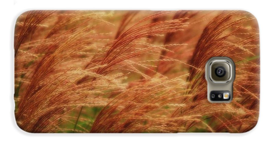 Win Galaxy S6 Case featuring the photograph Blowing In The Wind by Gaby Swanson