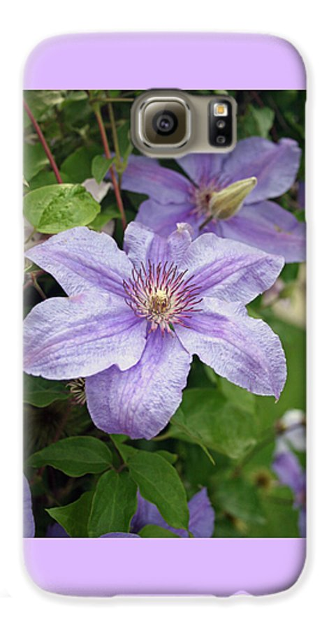 Clematis Galaxy S6 Case featuring the photograph Blue Clematis by Margie Wildblood