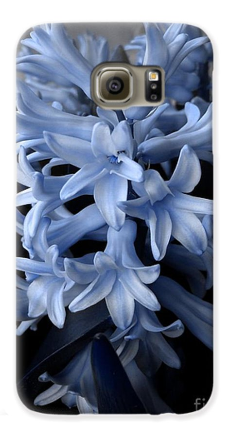 Blue Galaxy S6 Case featuring the photograph Blue Hyacinth by Shelley Jones