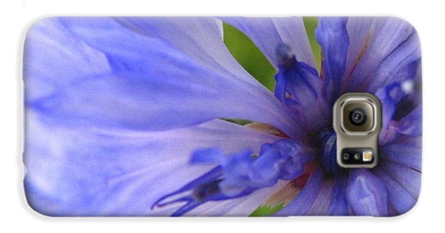 Flower Galaxy S6 Case featuring the photograph Blue Princess by Rhonda Barrett