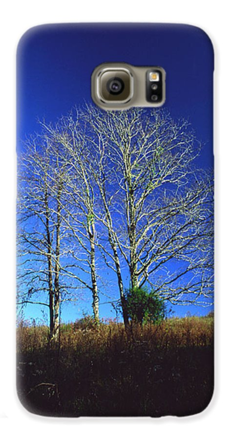 Landscape Galaxy S6 Case featuring the photograph Blue Tree In Tennessee by Randy Oberg