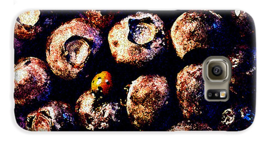 Blueberries Galaxy S6 Case featuring the photograph Blueberries And Ladybug by Nancy Mueller