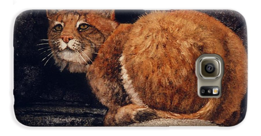 Wildlife Galaxy S6 Case featuring the painting Bobcat On Ledge by Frank Wilson