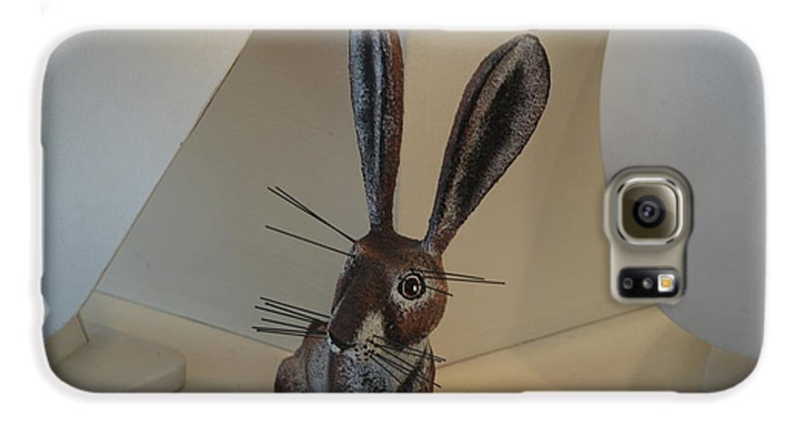 Rabbit Galaxy S6 Case featuring the photograph Boink Rabbit by Rob Hans