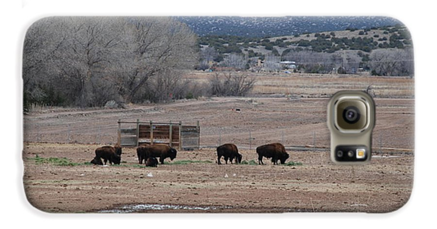 Buffalo Galaxy S6 Case featuring the photograph Buffalo New Mexico by Rob Hans