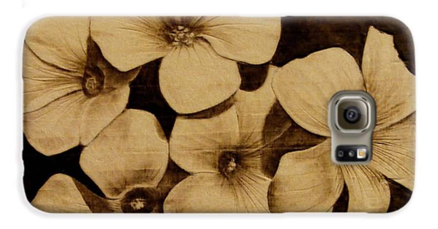 Pyrography; Sepia; Flower; Petals; Boquet; Pansy; Violet; Galaxy S6 Case featuring the pyrography Bursting by Jo Schwartz