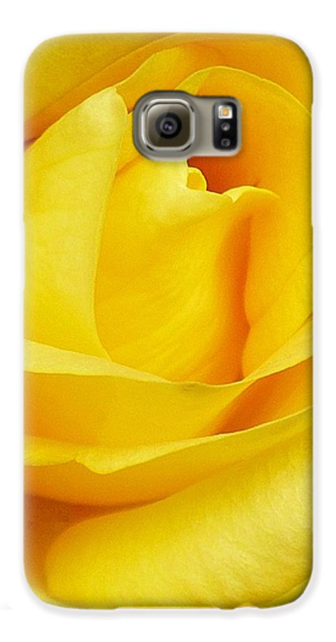 Botanical Galaxy S6 Case featuring the photograph Buttercup Rose by Florene Welebny