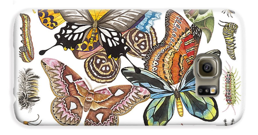 Butterflies Galaxy S6 Case featuring the painting Butterflies Moths Caterpillars by Lucy Arnold