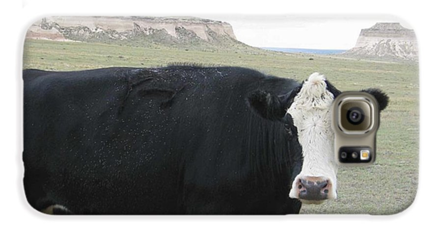 Rural Galaxy S6 Case featuring the photograph cattle at Pawnee Butte Colorado by Margaret Fortunato