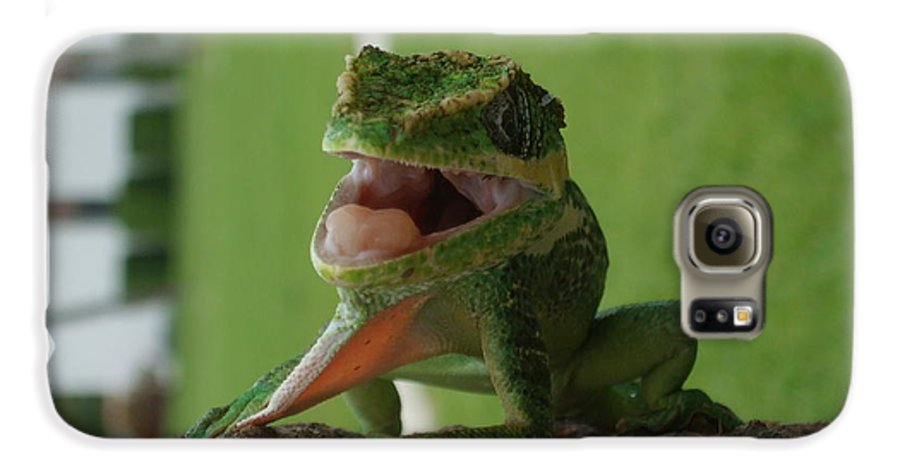 Iguana Galaxy S6 Case featuring the photograph Chilling On Wood by Rob Hans