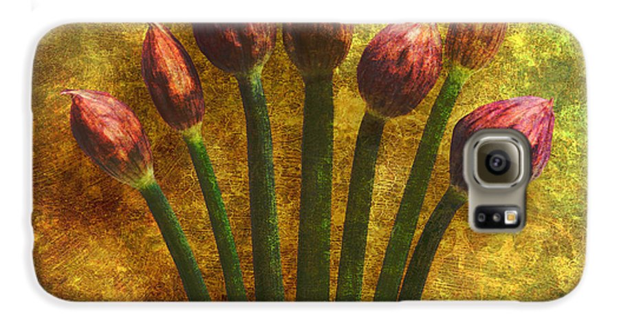 Texture Galaxy S6 Case featuring the digital art Chives Buds by Digital Crafts