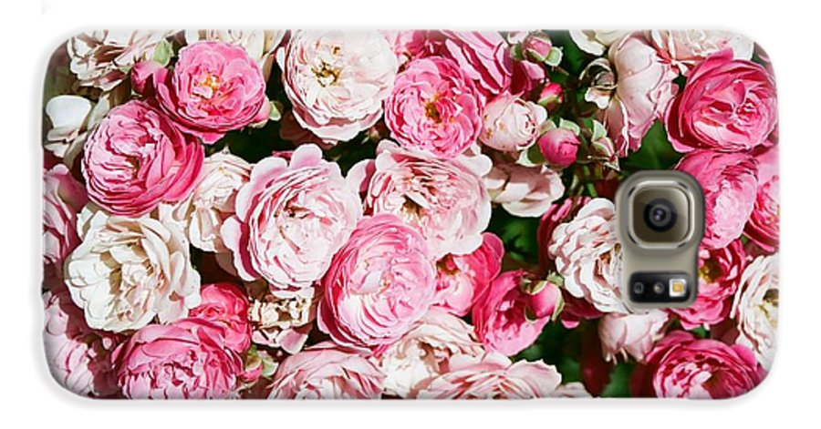 Rose Galaxy S6 Case featuring the photograph Cluster Of Roses by Dean Triolo
