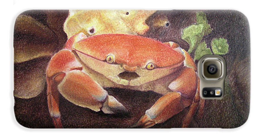 Animals Galaxy S6 Case featuring the painting Coral Crab by Adam Johnson