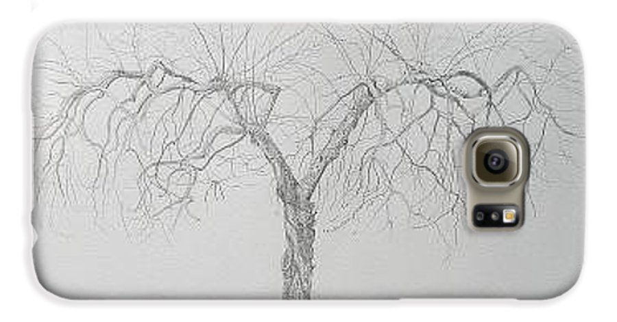 Cortland Apple Tree Galaxy S6 Case featuring the drawing Cortland Apple by Leah Tomaino