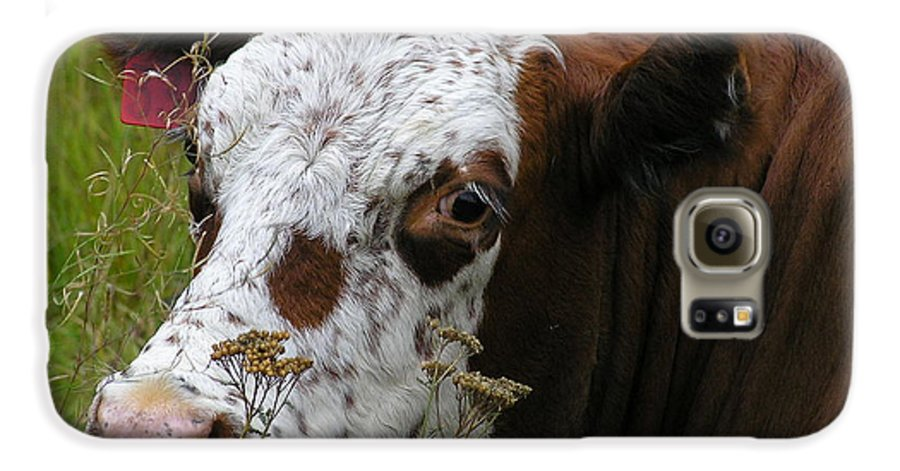 Tongue Galaxy S6 Case featuring the photograph Cow Tongue by Louise Magno
